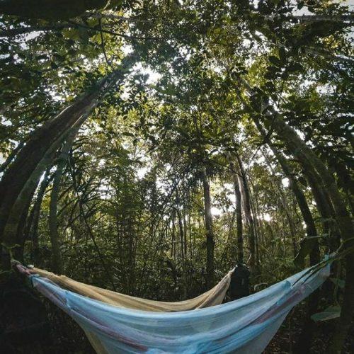 Pernoite na selva